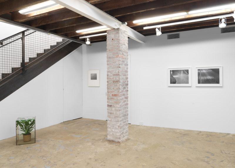 Arcadias group exhibition at Magenta Plains