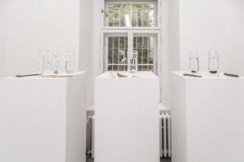 Andrea Pekárková at White Pearl Gallery